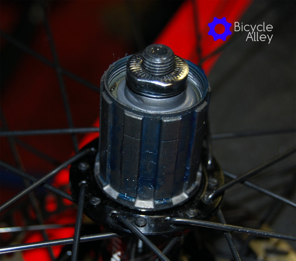 The new freehub has grease applied to the splines to help prevent corrosion.